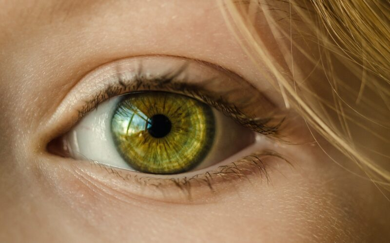 Computer model fosters potential improvements to 'bionic eye' technology